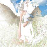 wings2lo